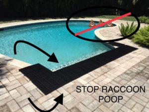 Stop Raccoon Poop